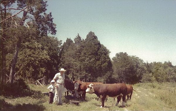 Polled Hereford Cattle - Farm and Ranch
